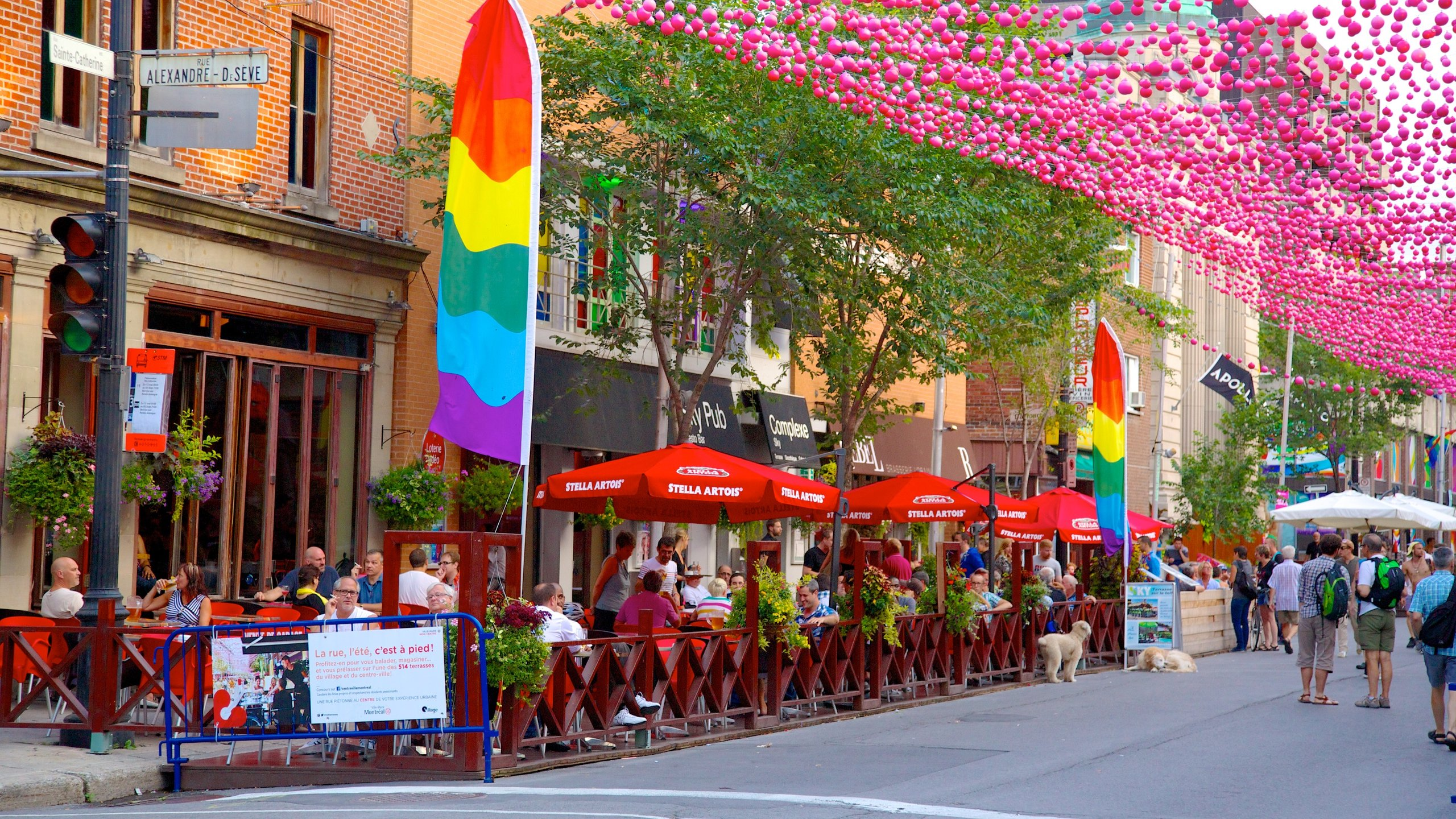 Gay montreal accommodations