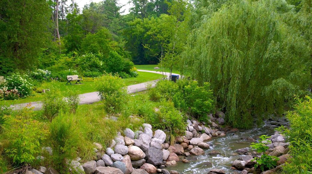 Edward Gardens featuring a river or creek and a garden