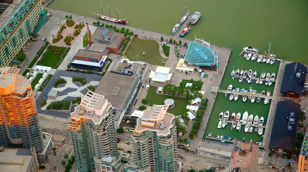 CN Tower showing a marina, a high rise building and a city