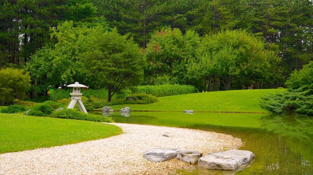 Montreal Botanical Garden welches beinhaltet Teich und Garten