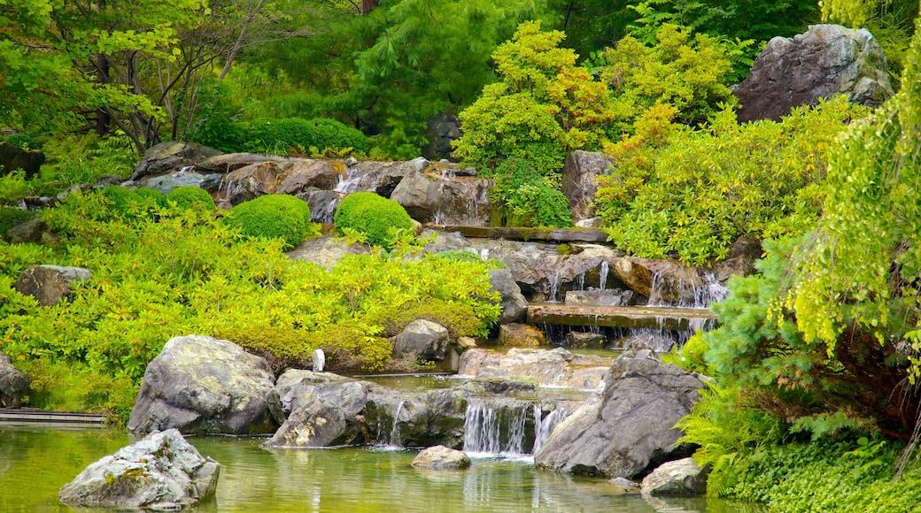 Montreal Botanical Garden welches beinhaltet Teich, Fluss oder Bach und Park