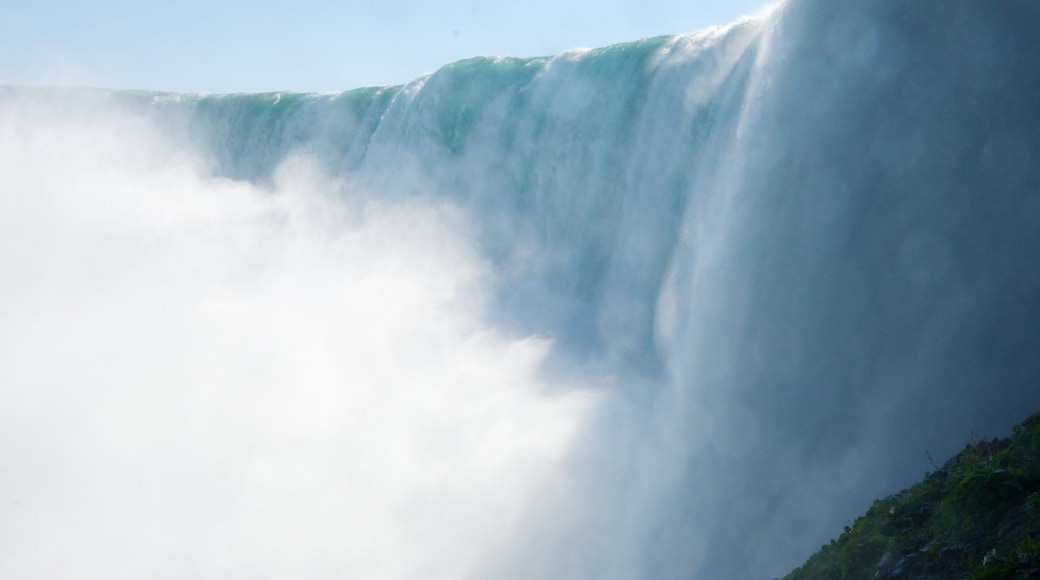 Horseshoe Falls showing a cascade and landscape views