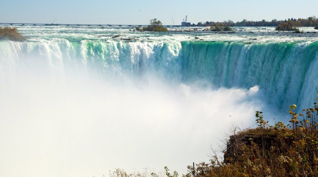 Horseshoe Falls which includes a cascade
