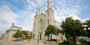 Notre-Dame Cathedral Basilica which includes religious aspects, a church or cathedral and heritage elements