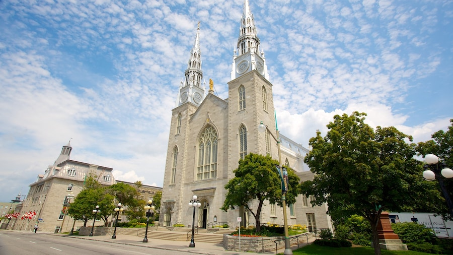 Notre-Dame Cathedral Basilica which includes religious aspects, a church or cathedral and heritage architecture