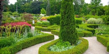 多倫多植物公園 设有 花園