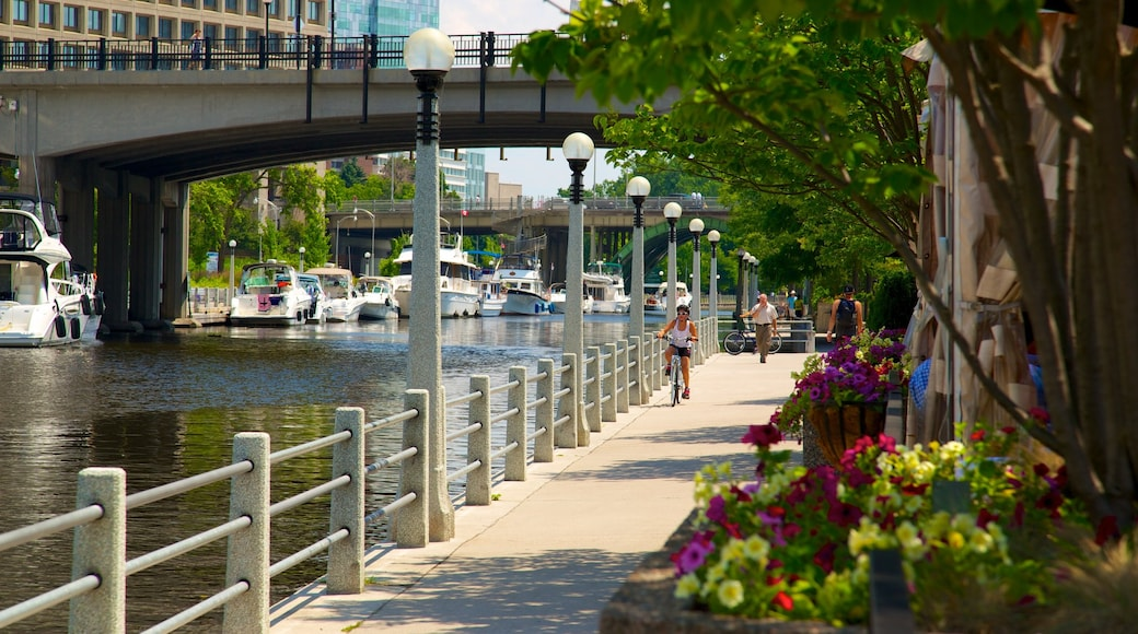 Rideau Canal featuring street scenes, a city and cycling