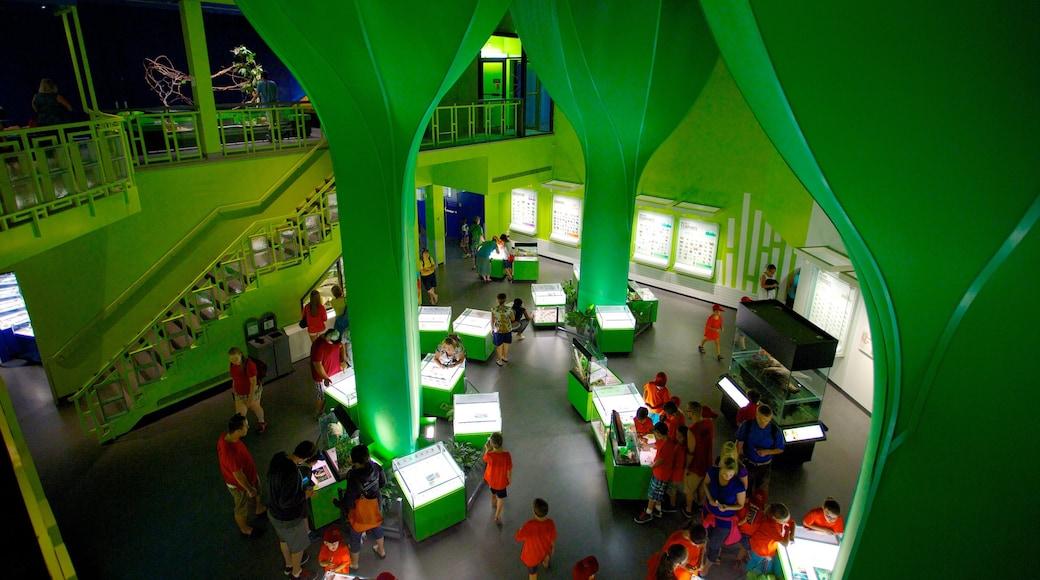 Montreal Insectarium che include vista interna cosi come un grande gruppo di persone