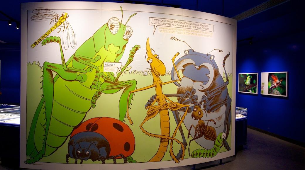Montreal Insectarium mostrando vista interna