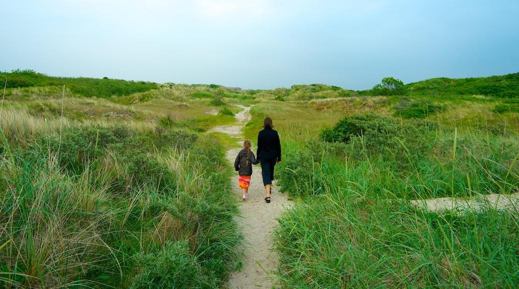 Grenen featuring yleiset rantanäkymät ja maisemat sekä perhe