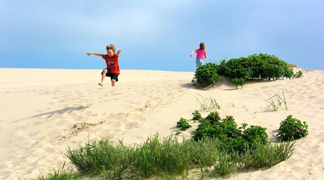 Råsbjerg mile fasiliteter samt strand i tillegg til barn