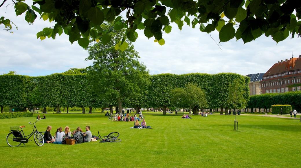 Rosenborg Slot som viser en have og picnic