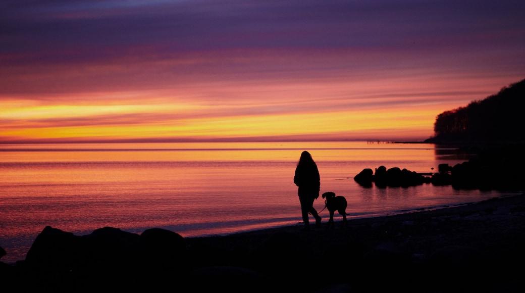 Aarhus som viser en sandstrand og en solnedgang såvel som en kvinde