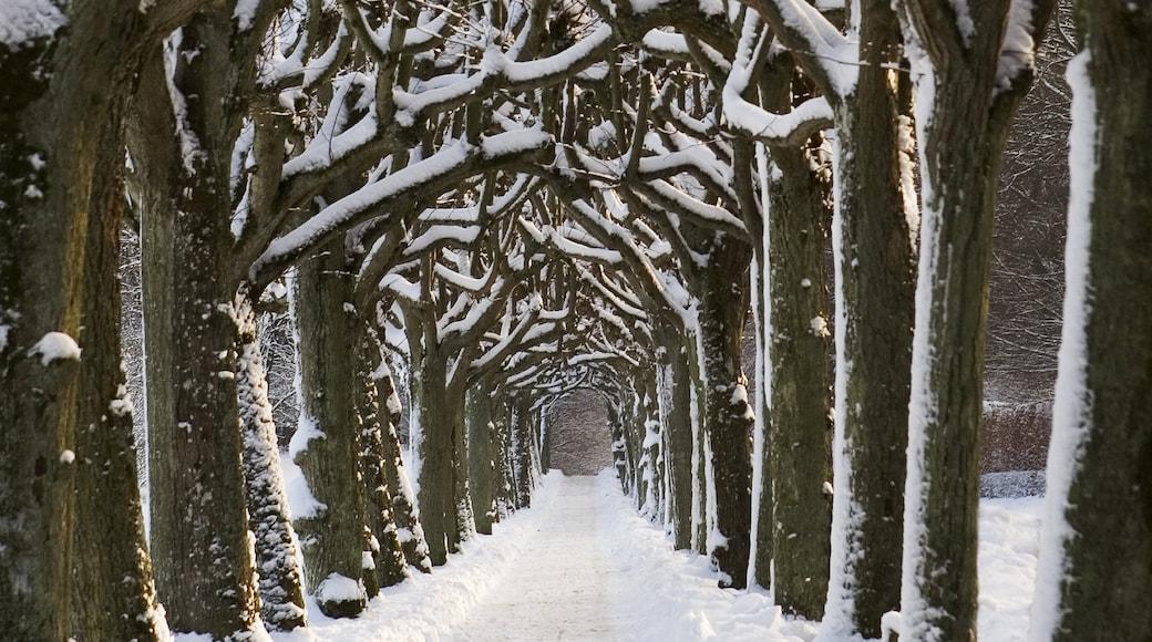 Aarhus og byder på sne og en have