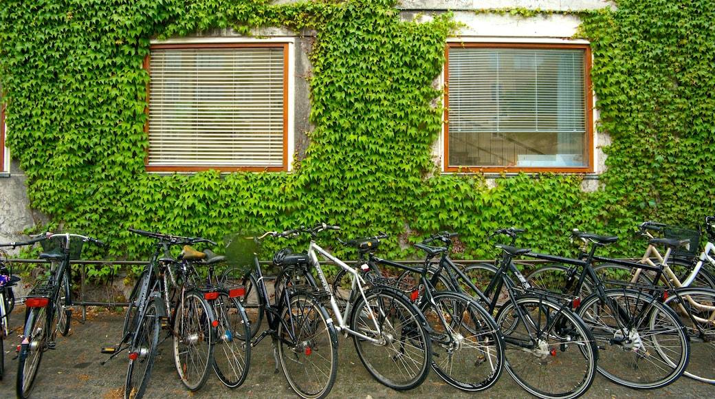 Aarhus Rådhus som viser cykling