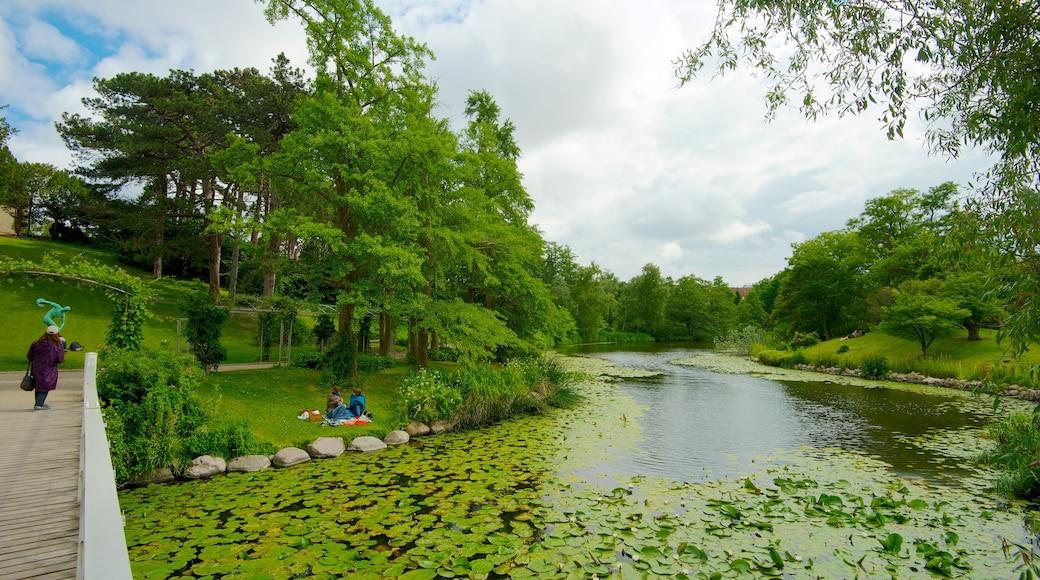 Botanischer Garten das einen Brücke, Fluss oder Bach und Garten