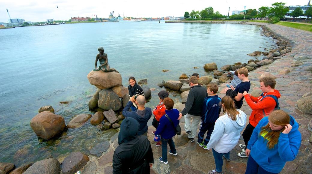 Den lille havfrue fasiliteter samt statue eller skulptur, kyst og bukt eller havn