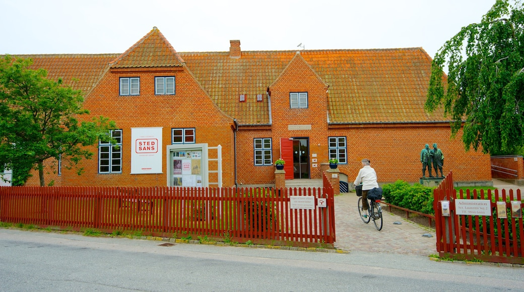 Skagens Museum showing cycling