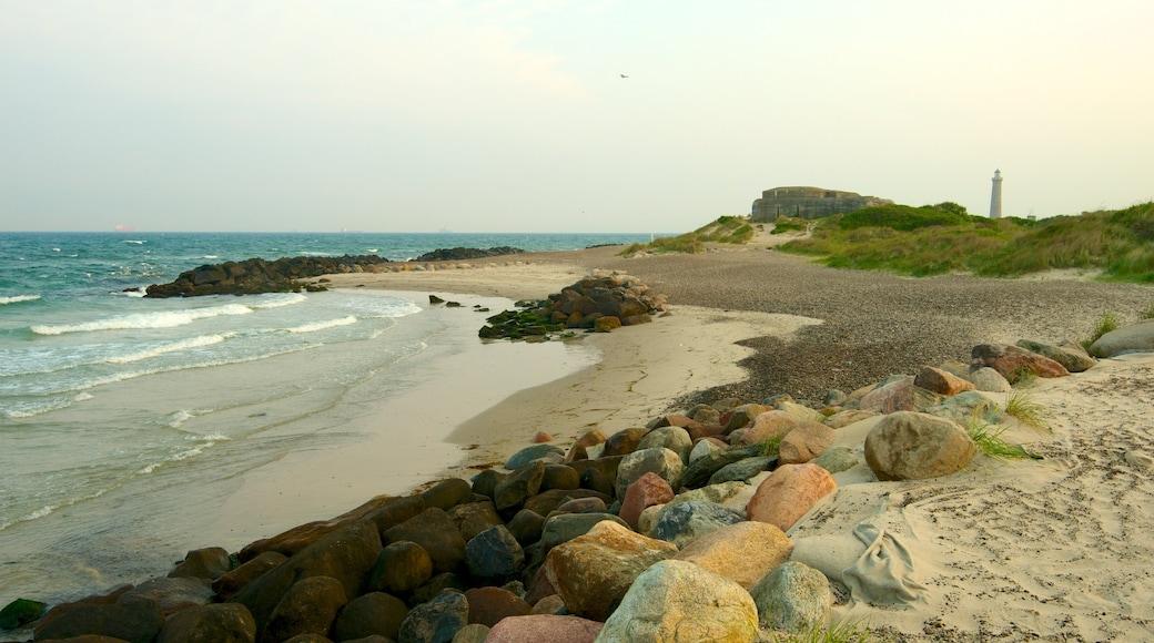 Grenen johon kuuluu karu rannikko ja ranta
