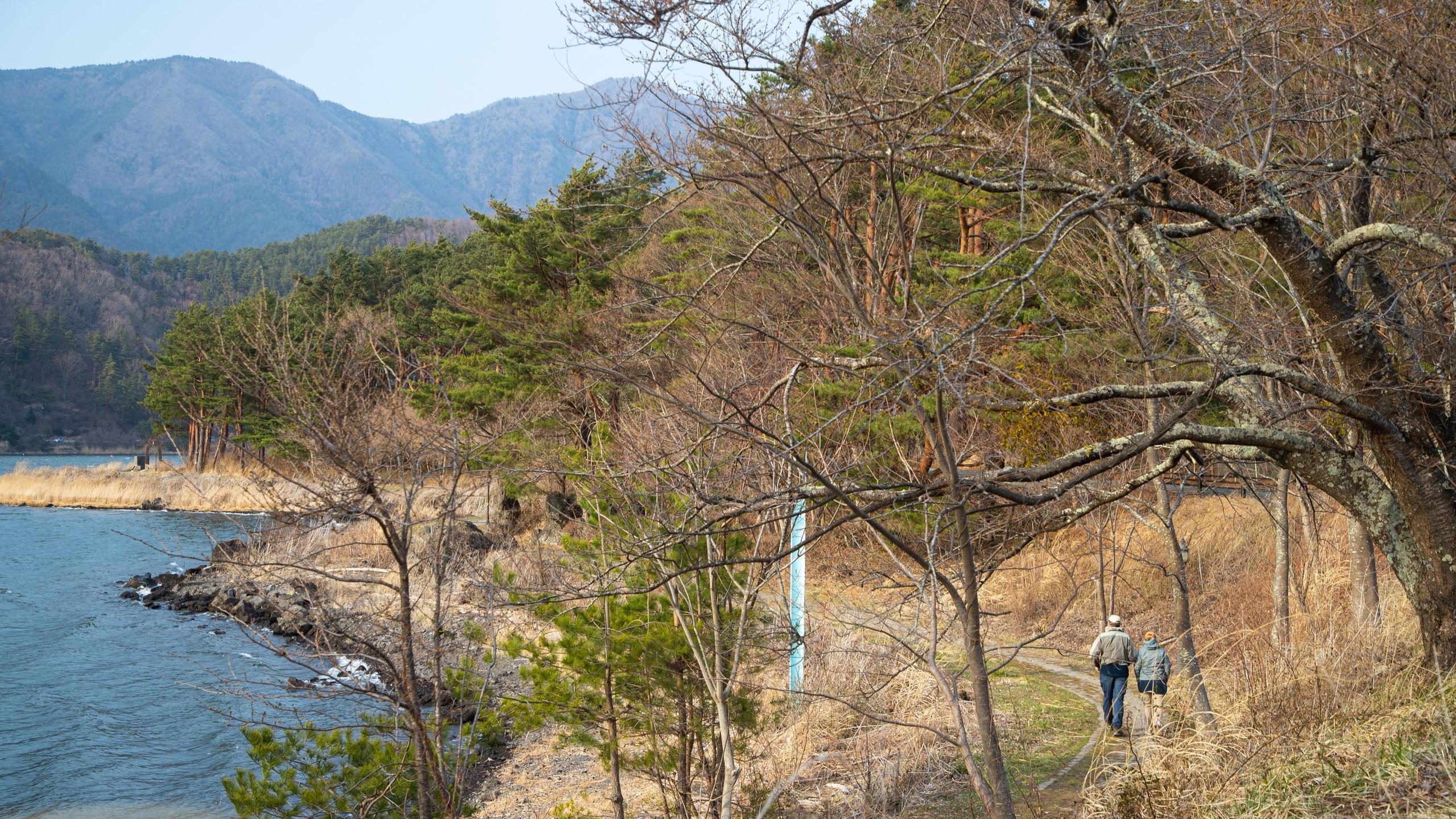 Minamitsuru-gun, Yamanashi (prefectuur), Japan