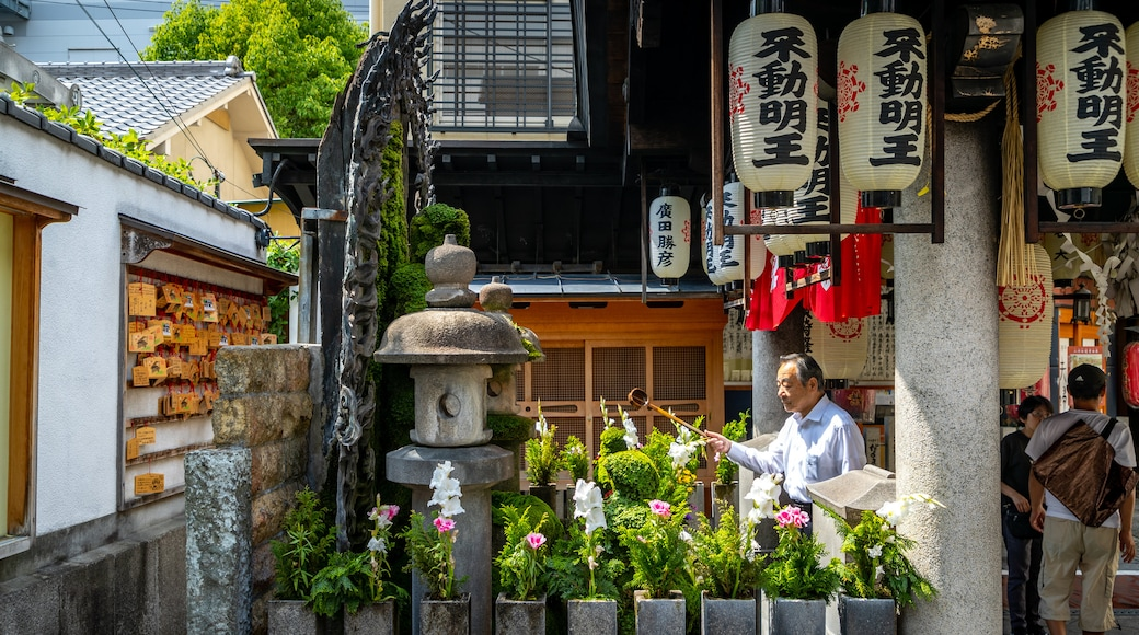 Hozen ji Temple showing flowers and a garden as well as an individual male