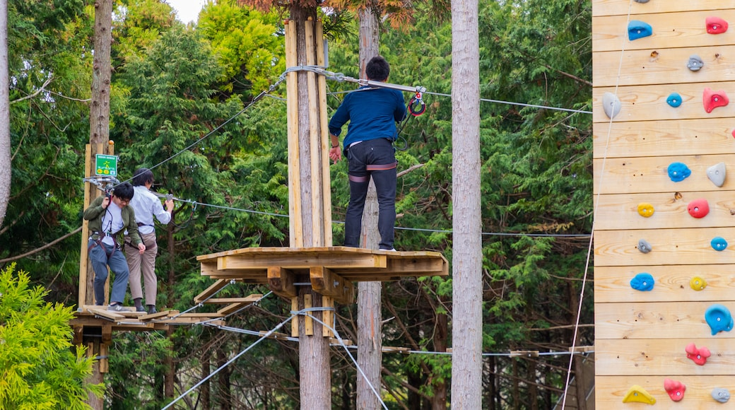 Mishima Sky Walk featuring zip lining as well as a small group of people
