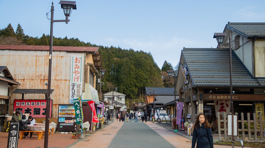 Hakone Sekisho showing street scenes as well as an individual femail