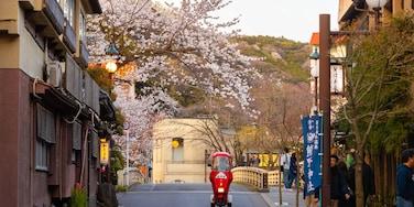 湯本, 箱根, 神奈川, 日本