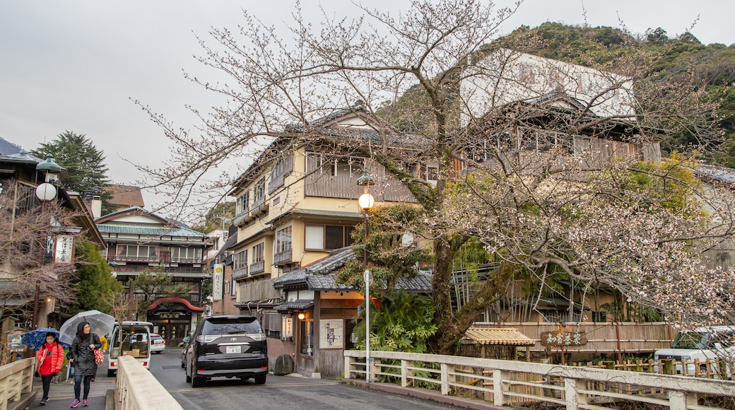 Hakone Hot Springs showing street scenes as well as a family
