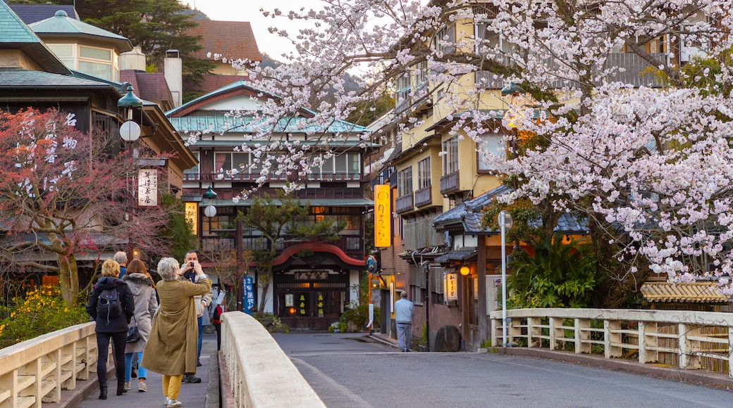 Hakone Hot Springs which includes wildflowers and street scenes as well as a couple