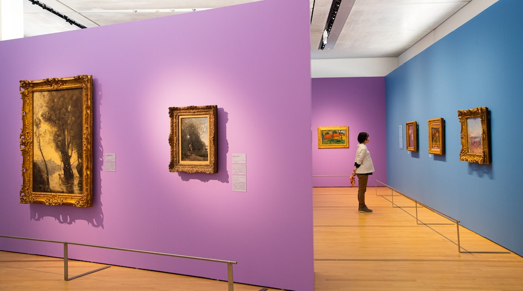 Pola Museum of Art featuring interior views and art as well as an individual femail