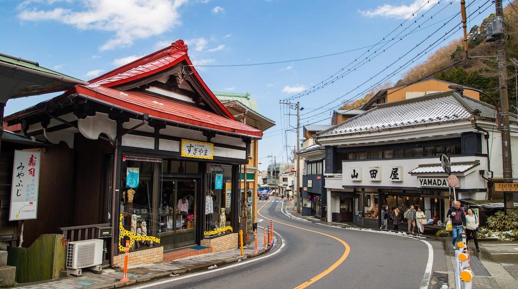 Miyanoshita showing street scenes