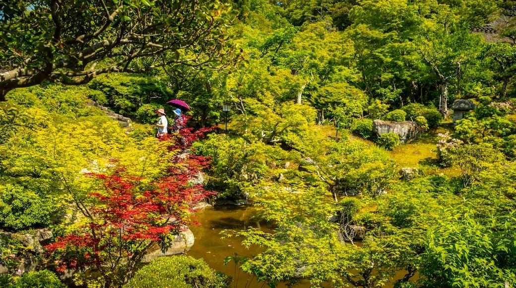 Yoshikien Garden showing a pond and a garden