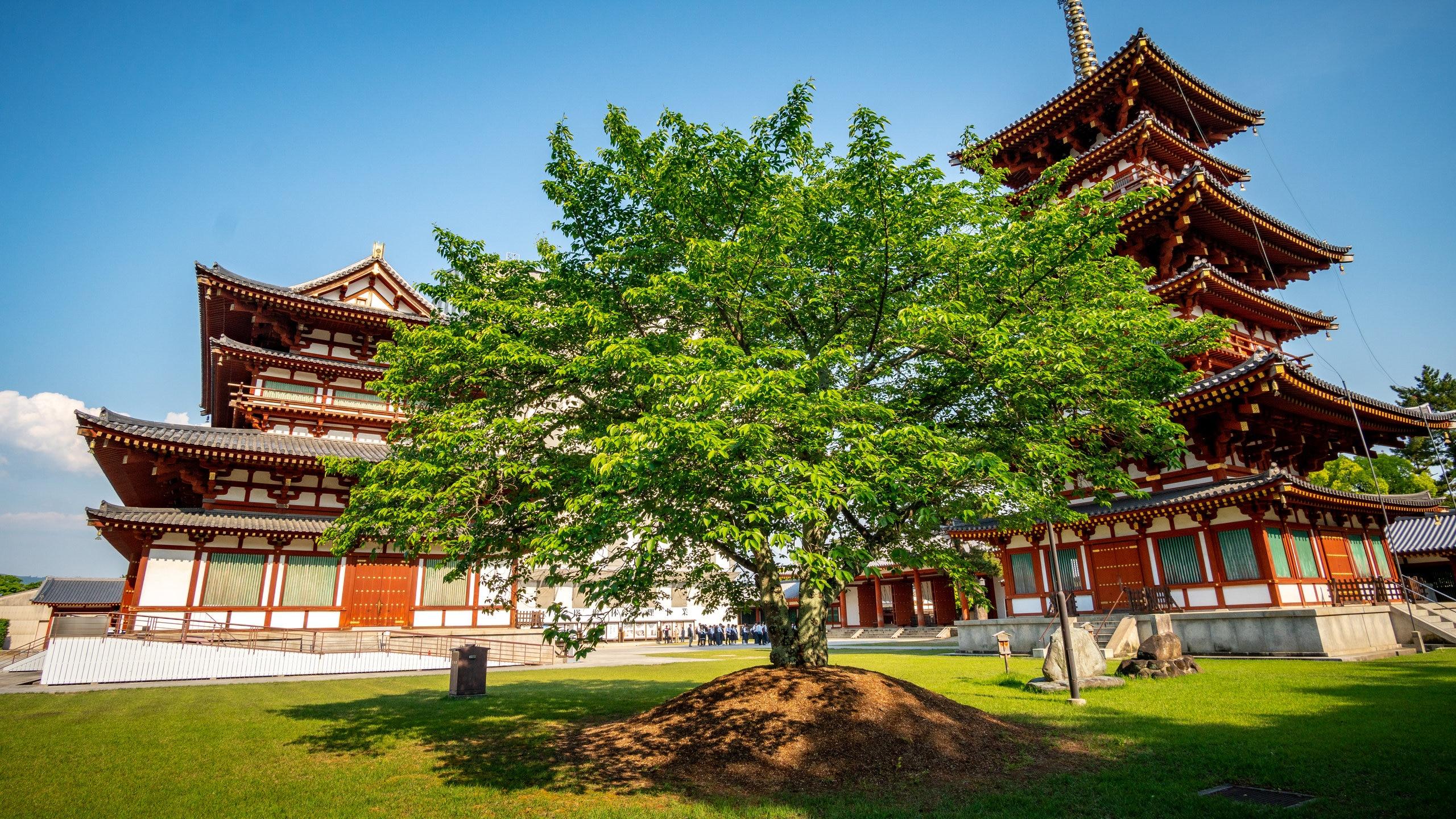 Yakushi-ji Temple, Nara, Nara Prefecture, Japan