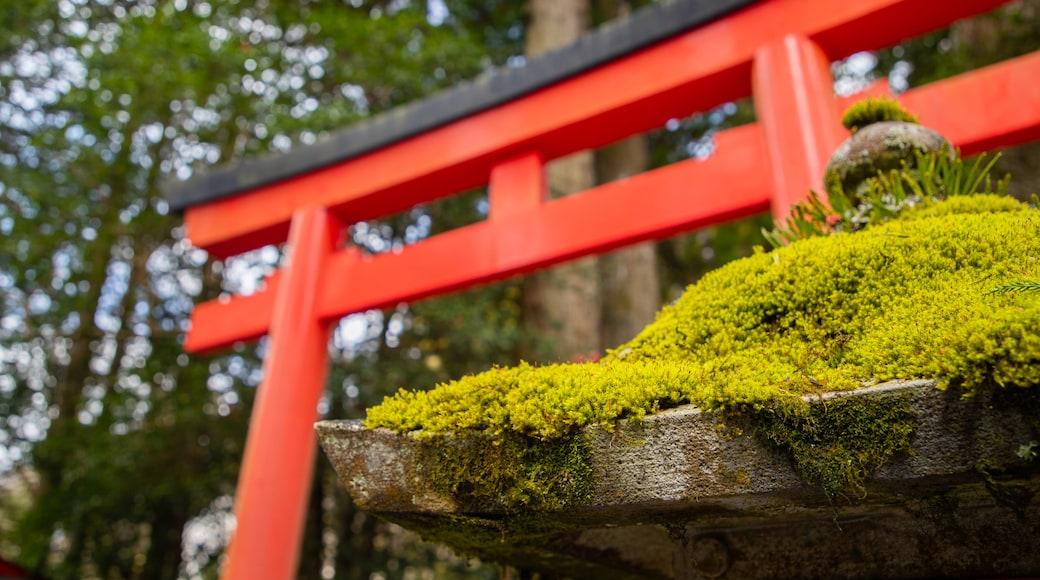 Hakone Shrine showing heritage elements