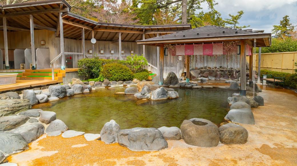 Hakone Kowakien Yunessun showing a pond