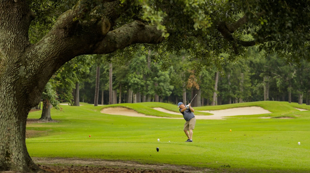 Arcadian Shores Golf Club featuring golf as well as an individual male