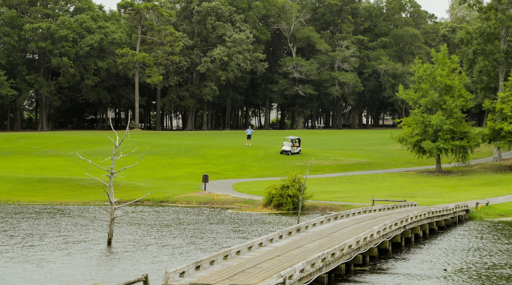 Arcadian Shores Golf Club which includes golf, a bridge and a pond