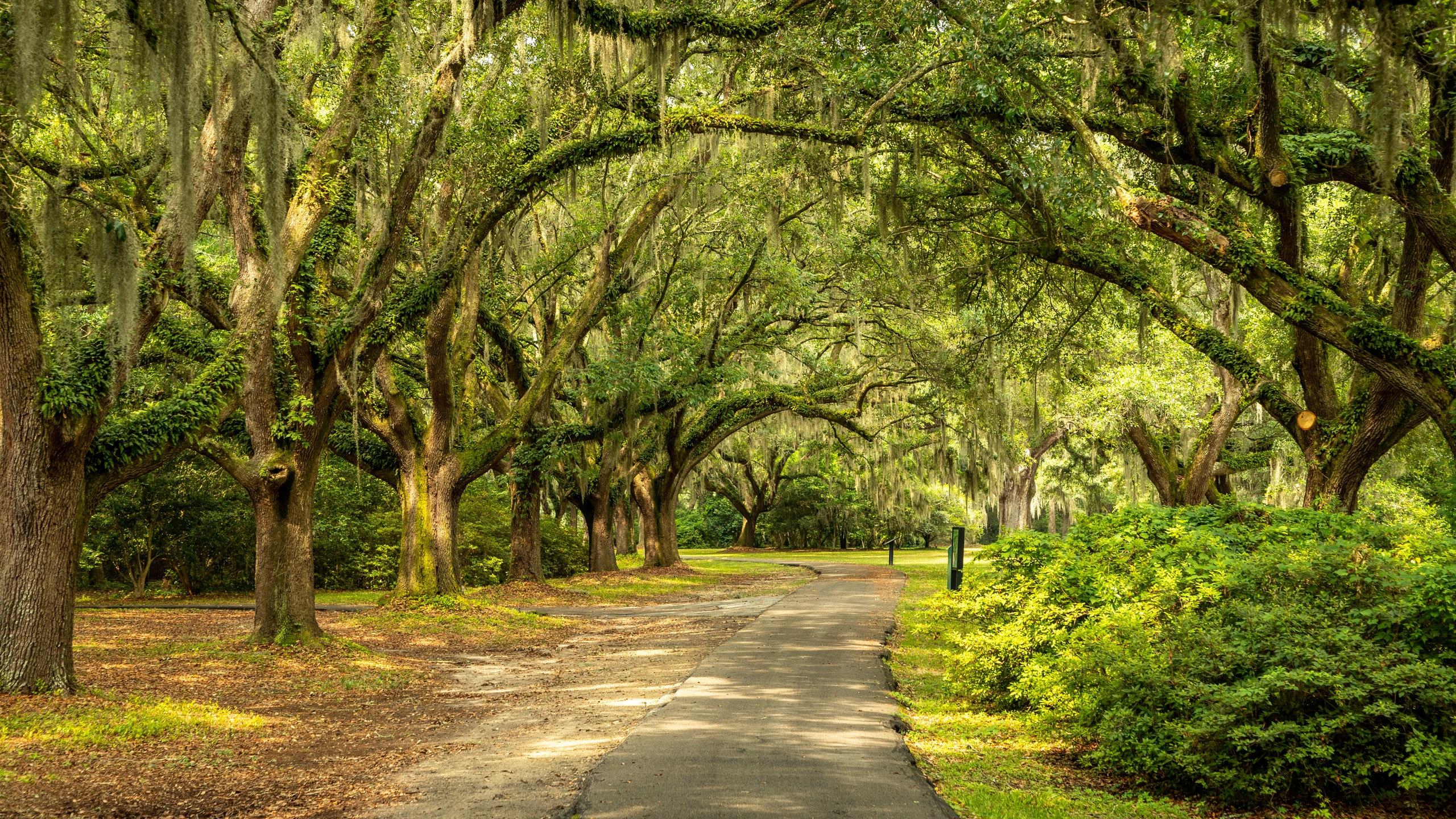 Charles Towne Landing State Historic Site, Charleston, South Carolina, United States of America
