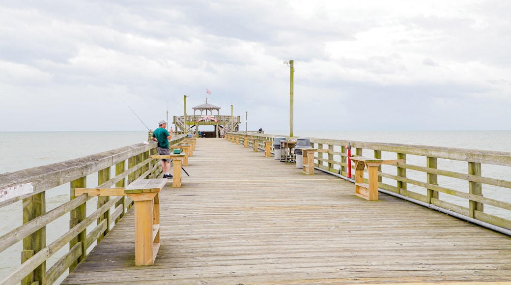 Cherry Grove Pier which includes general coastal views