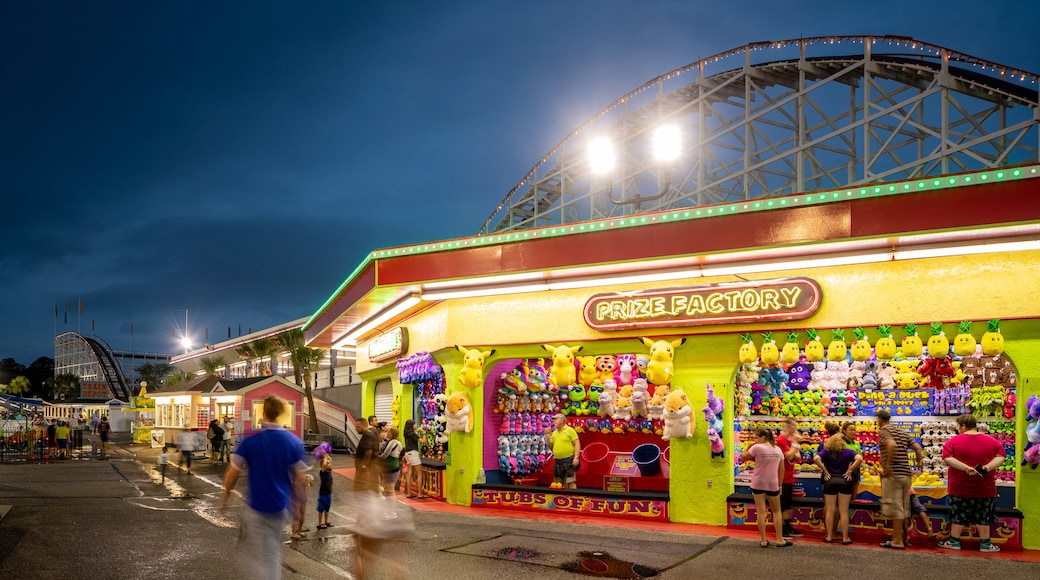 Family Kingdom Amusement Park featuring signage, night scenes and rides