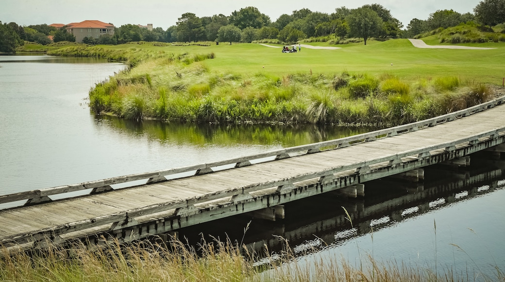 Grand Dunes Golf Course showing a bridge, a pond and golf
