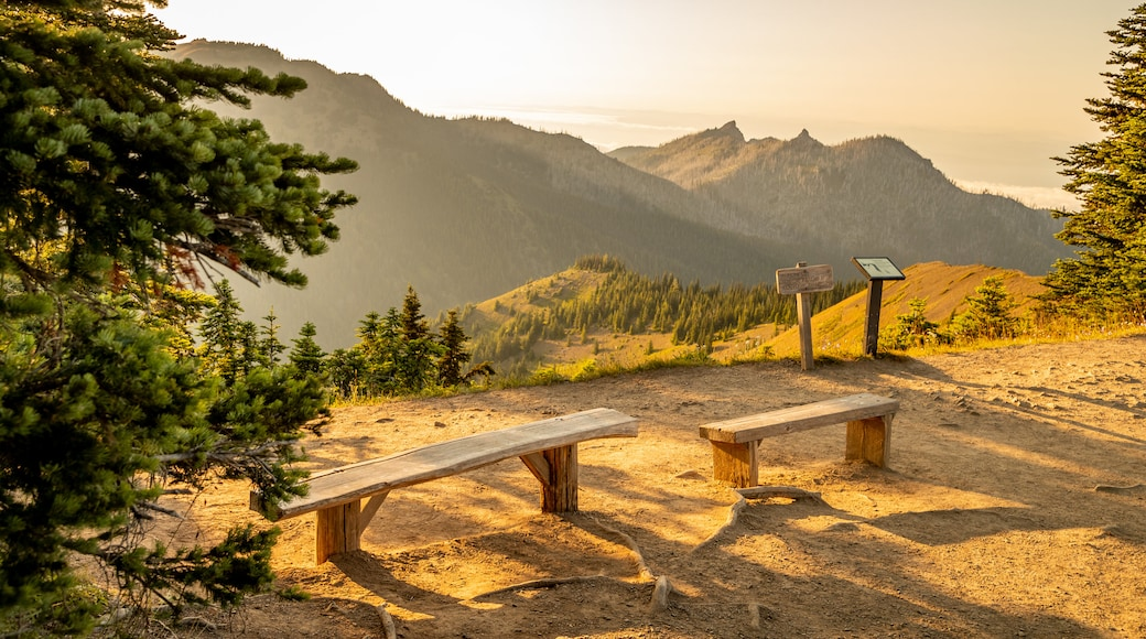 Hurricane Ridge which includes views, landscape views and tranquil scenes