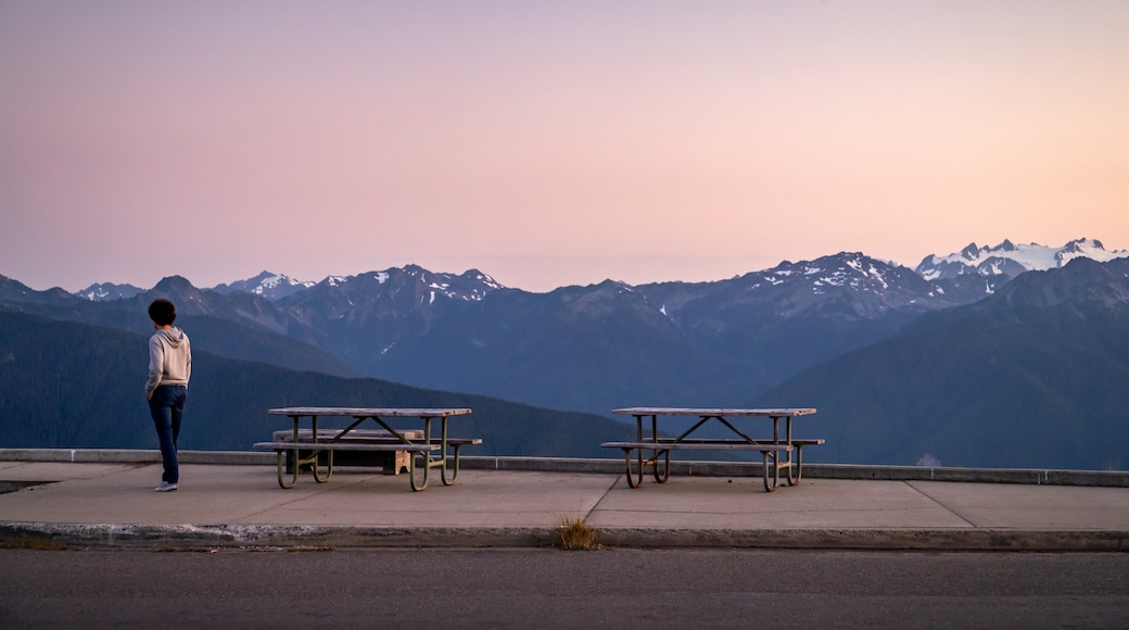 Hurricane Ridge which includes a sunset, tranquil scenes and views