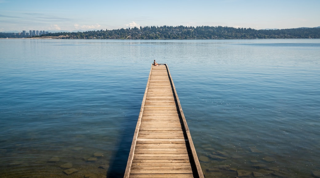 Lake Washington showing a lake or waterhole
