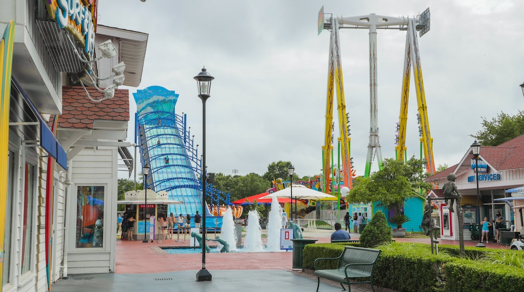 OD Pavilion Amusement Park showing rides