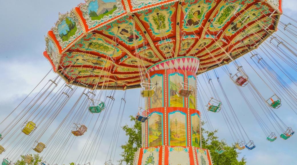 OD Pavilion Amusement Park featuring rides