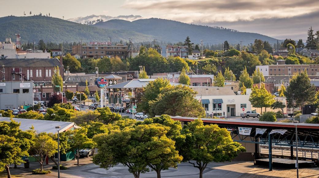 Port Angeles showing landscape views