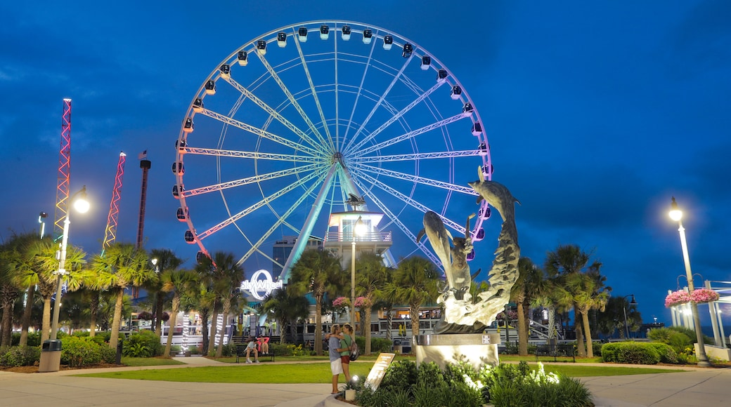 SkyWheel Myrtle Beach showing night scenes and a park
