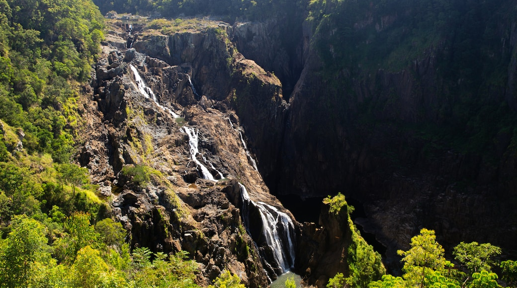 Parque Nacional Barron Gorge